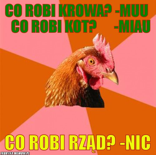Co robi krowa? -MUU    co robi kot?      -miau – co robi krowa? -MUU    co robi kot?      -miau co robi rząd? -Nic