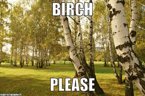 Birch – birch please