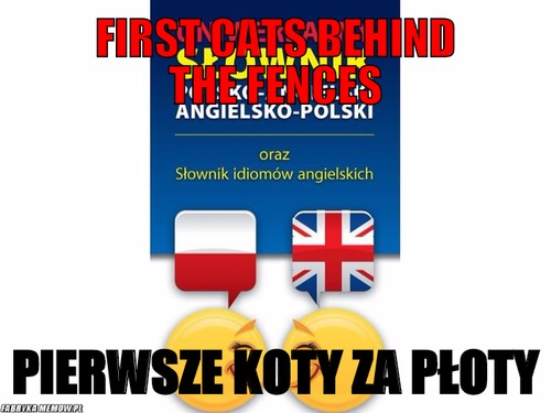 First cats behind the fences – first cats behind the fences pierwsze koty za płoty